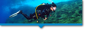 discover-scuba-diving-internal